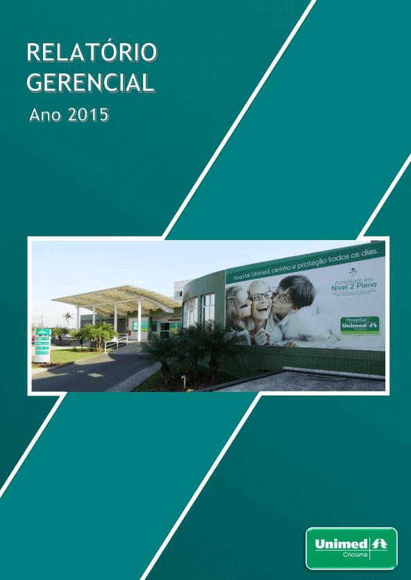 imagem relatório do ano de 2015